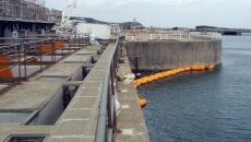 Trzęsienie ziemi w Japonii. Fukushima ewakuowana