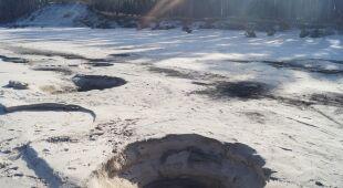 Kratery po nielegalnych poszukiwaniach bursztynu na Pomorzu (WWF Polska)