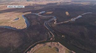 Widok z drona na spalone tereny Biebrzańskiego Parku Narodowego, kwiecień 2020